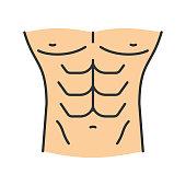Muscular male torso vector color icon