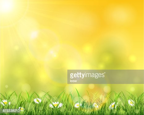Nature and sun over grass : Vector Art