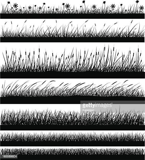 Nature Elements - Grass