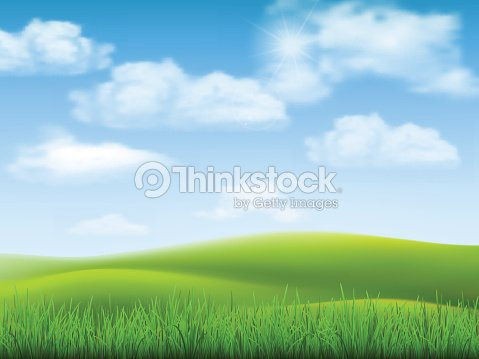 Nature landscape sky and grass