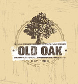 Oak Tree Logo Vector Design.