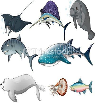 Animali marini arte vettoriale thinkstock - Clip art animali marini ...