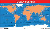 The ocean currents. Vector map
