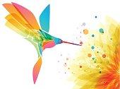Hummingbird bird and flower on white background, art design