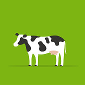 One cow in green background, animal illustrations.