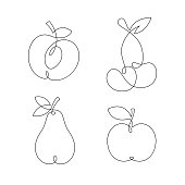 One line continuous fruits illustration. Vector isolated on white background.