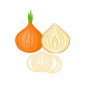 onion whole and slices isolated on white background. Vector illustration. ingredients for cooking.