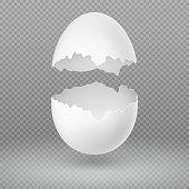Opened white egg with broken shell isolated vector illustration. Eggshell fragile broken, open and cracked oval egg