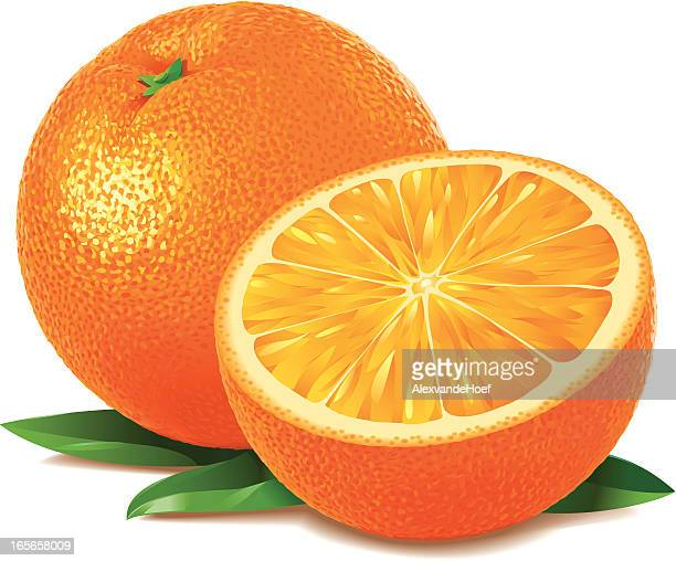 Illustrations et dessins anim s de fruit getty images - Orange dessin ...