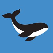 Simple vector icon of orca. Killer whale illustration for web or logo.