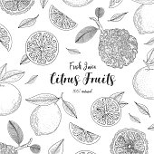 Organic citrus fruit banners. Healthy food. Engraving sketch vintage style. Vegetarian food for design menu, recipes, decoration kitchen items. Great for label, poster, packaging design