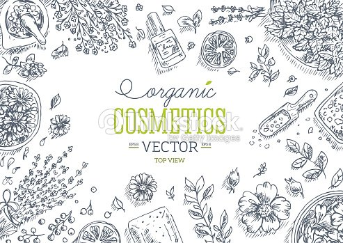 Organic Cosmetics Top View Frame Natural Cosmetics Background Vector ...