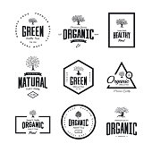 Organic natural and healthy farm fresh food retro emblem set. Olive tree vintage old logo badge isolated on white background. Premium quality green plant organic fashion logotype illustration design.