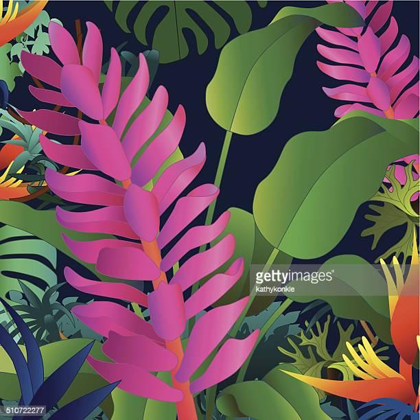 Indisches Ingwer und heliconia tropischen Blumen