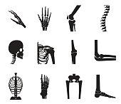 Orthopedic and spine icon set on white background, bone x-ray image of human joints, anatomy skeleton flat design vector illustration.