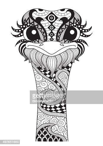 Ostrich Coloring Page Vector Art Thinkstock Ostrich Coloring Page
