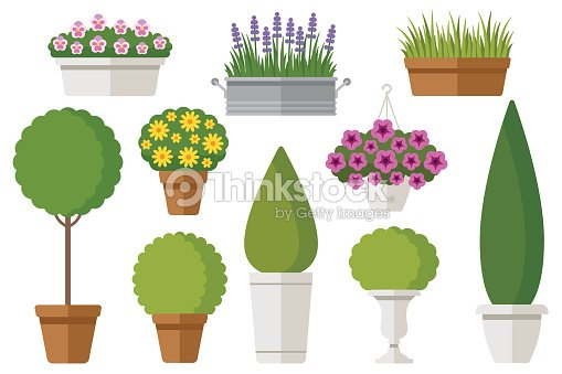 Outdoor potted plants : stock vector