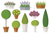 Vector set of outdoor potted plants: bushes, trees, flowers. Isolated on white. Flat style.