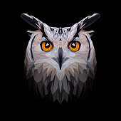 Owl low poly design. Triangle vector illustration.