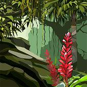 painted red ginger flowers among tropical plants in the jungle
