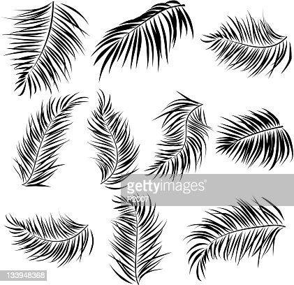Palm Leaves Elements