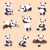 Panda cartoon character in various expression vector animal white cute china black panda bear giant mammal fat wilderness rare. Lying woods panda bear eating bamboo china wild animals.