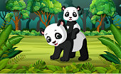 illustration of Panda with baby panda in the forest