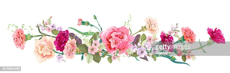 Panoramic View Bouquet Of Carnation Schabaud Spring Blossom