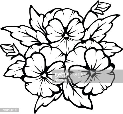 Pansy Flowers Black Contours Vector Illustration Vector