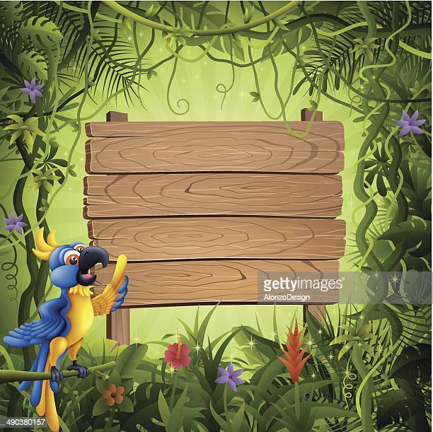 Parrot and Wooden Banner in the Jungle