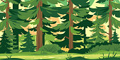 Path through the forest with big green trees, tourist route through the dense spruce forest and bushes in summer sunny day nature illustration background
