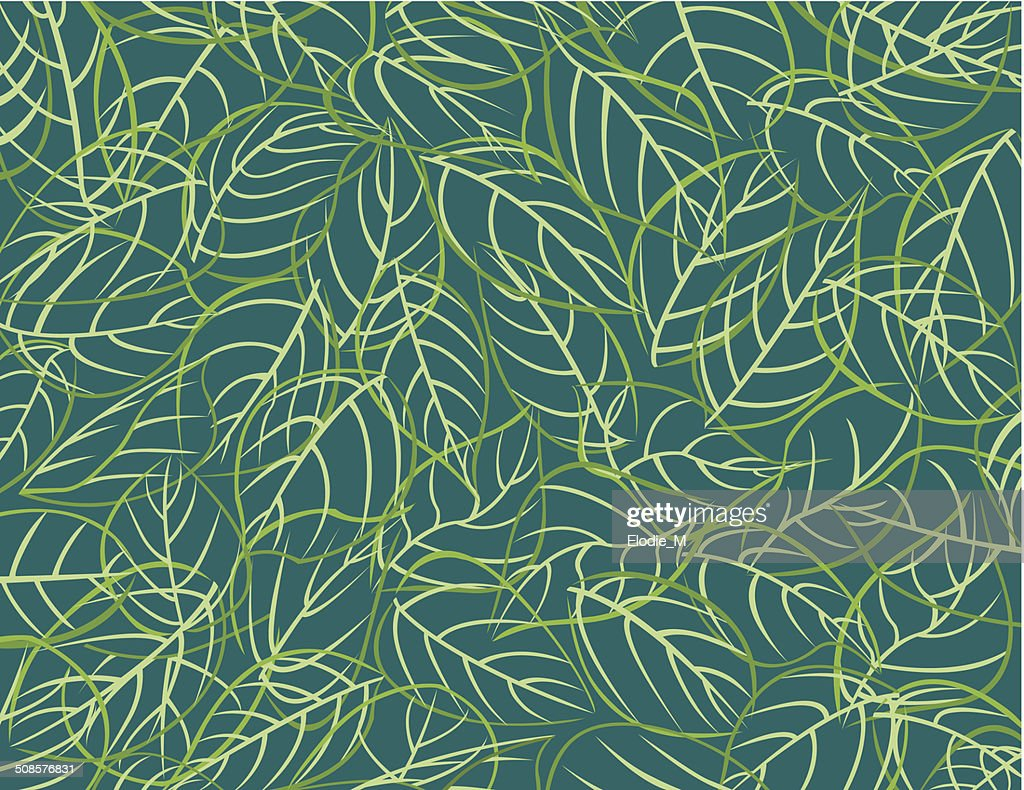 Pattern leafs / Feuilles : Vector Art