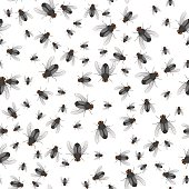 Seamless pattern of crawling large and small flies. Insects. Vector illustration.