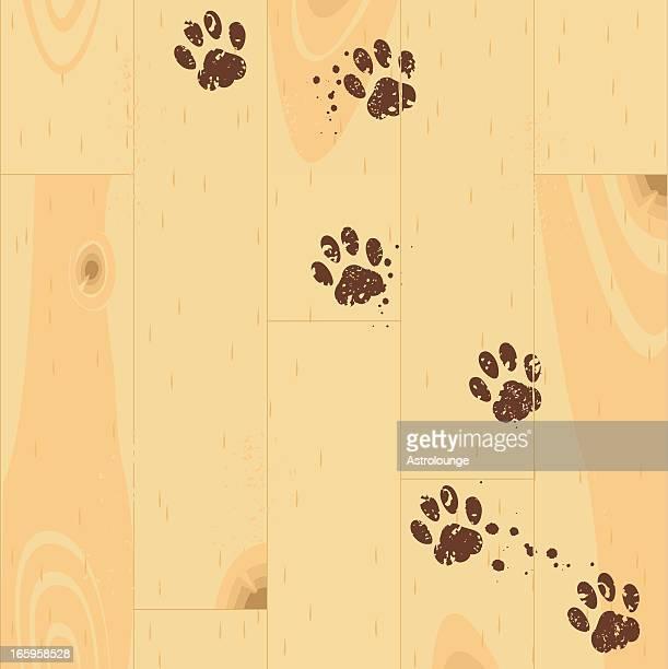 Paw tracks