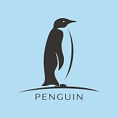 Penguin icon vector, filled flat symbol on blue background
