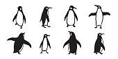 penguin vector icon logo cartoon character fish salmon illustration doodle