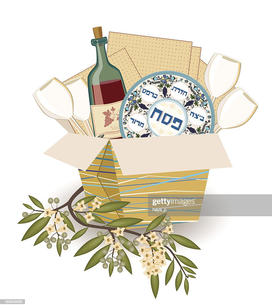 Pesach Symbols With Olive Branch : Vector Art