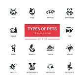 Pet Types - set of vector line silhouette icons, pictograms. Cats, dogs, reptiles, amphibians, snails, fish, birds, rodents, ferrets, spiders, insects, outdoor, exotic pets, hedgehogs