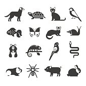 Vector collection of modern black icons of domestic mammals, rodents, insects, birds and reptiles, including dog, cat, rabbit, ferret, parrot, snake, chameleon, hamster and tarantula.