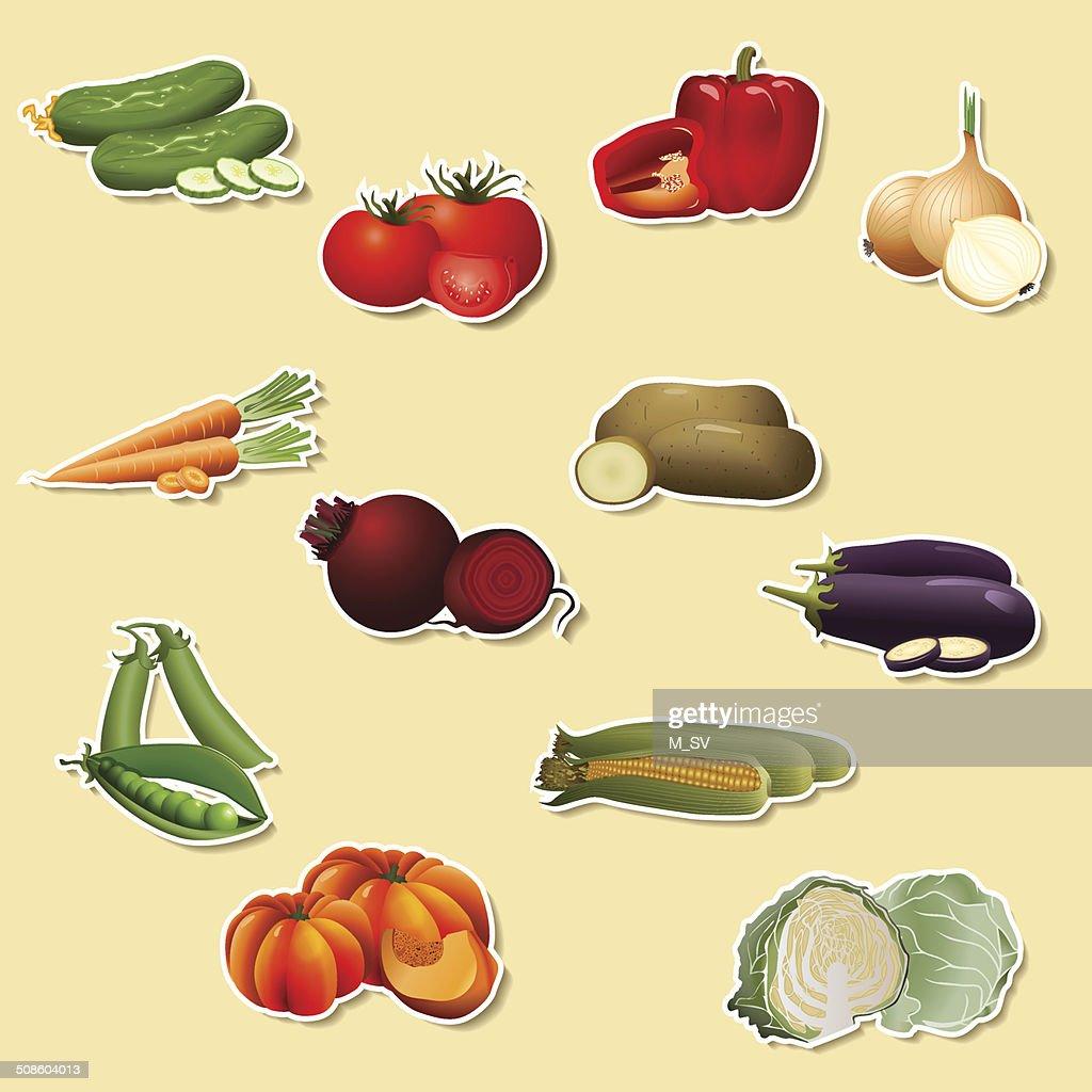 Piezas de verduras : Arte vectorial