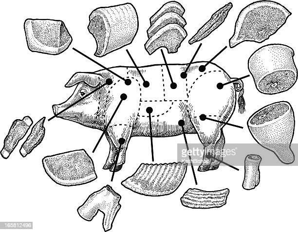 pork stock illustrations and cartoons