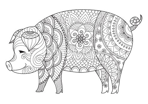 Pig Coloring Book Vector Art