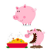 Greedy Pig eating from Trough