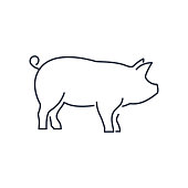 Pig icon, piggy silhouette linear sign isolated on white background - editable vector illustration eps10. Happy new year 2019 Chinese symbol. Icon for web or postcard