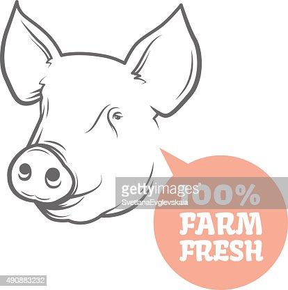 pig logo design template vector art thinkstock