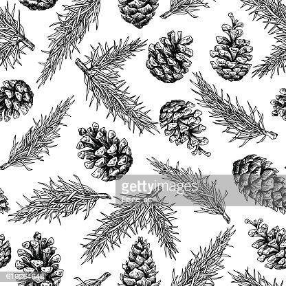 Pine cone and fir tree seamless pattern. Botanical hand drawn : Vector Art