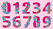 Pink carved paper isolated numeral signs from zero to nine with beautiful eucalyptus blossom. Vector illustration.