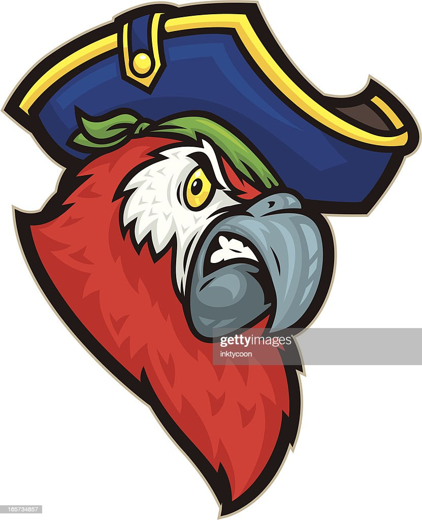 pirate parrot vector art getty images