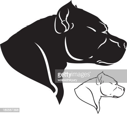 Pit Bull Vector Vector Art | Getty Images