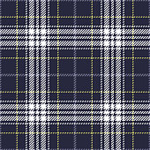 Plaid pattern seamless vector graphic in dark blue, green, purple, and white. Tartan check plaid for flannel shirt, skirt, underwear, blanket, or other modern textile design. Woven pixel texture.
